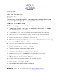 it executive resume doc development manager banking resume