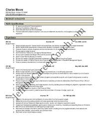 download the budget analyst resume sample two in pdf yumpu download the budget analyst resume sample two in pdf yumpu budget analyst resume sample