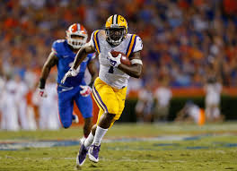Image result for lsu
