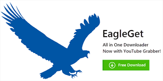 EagleGet 1.0.8.0 Beta,2013 images?q=tbn:ANd9GcQ