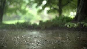 Image result for rain gif