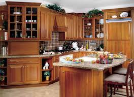 oak kitchen cabinets simple remodel