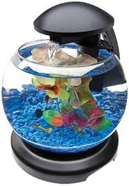 the tetra waterfall globe aquarium would make a modern unique gift idea for any office or home this 18 gallon aquarium is equipped with a build in filter office desk aquarium