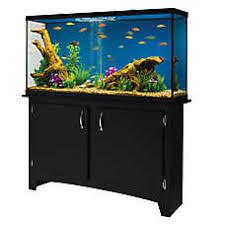 <b>Fish Tanks</b> & <b>Aquariums</b> | PetSmart