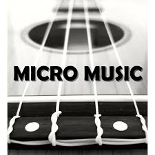 Micro Music