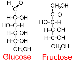 sci bestq bm   carbohydrateuntitled  png