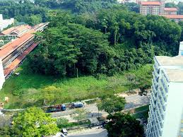 Image result for Bukit Batok rats + hill