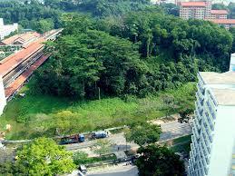Image result for Bukit Batok rats + hill