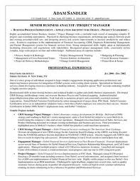 sample resume healthcare business analyst   reference letter for    sample resume healthcare business analyst healthcare business analyst resume sample best format