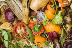 Image result for compost heap