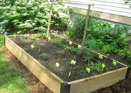Small Picture Raised Bed Garden Design Ideas landscape architects landscape