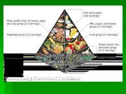 essay on importance of good eating habits  essay for you  essay on importance of good eating habits  image