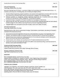 EXAMPLES   RescueResumes   Professional Resume Writing Services RescueResumes