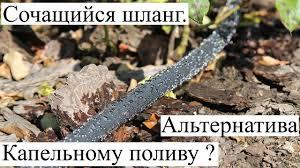 <b>Сочащийся шланг</b> - альтернатива Капельному поливу ...