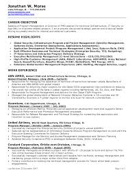 resume examples  executive resume objective exampl  selfirm    resume examples  executive resume objective examples with global program manager experience  executive resume objective