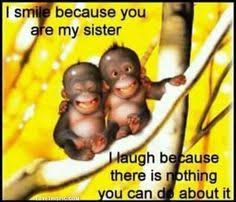 Sister Birthday Quotes | Sisters | Pinterest | Birthday quotes ... via Relatably.com