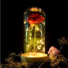 red rose lights decorations beauty enchanted <b>preserved</b> red <b>fresh</b> ...
