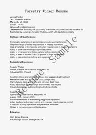 forest worker resume s worker lewesmr