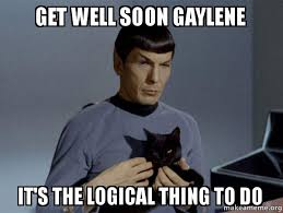 Get Well Soon Gaylene It's the logical thing to do - Spock and Cat ... via Relatably.com