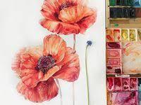 adel набор цветных карандашей aquacolor с кисточкой 12 цветов