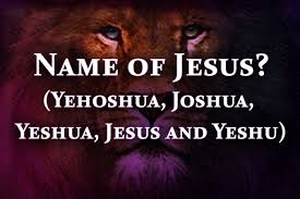 Image result for Yeshua and California girls