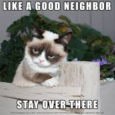 Grumpy Cat Meme - Like a good neighbor... | Grumpy Cat® - The ... via Relatably.com