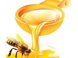 Imagini pentru miere de albine
