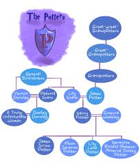 sparklife these harry potter family trees are siriusly the best these harry potter family trees are siriusly the best too soon