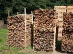 Quale legna usare per accendere il fuoco con l archetto