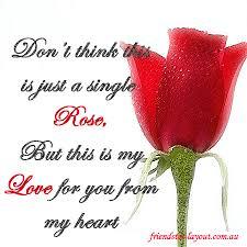 في روحك  وردة لمن   ترسل عطرها  / إهداء  لمن تحب بلغة الورد - صفحة 2 Images?q=tbn:ANd9GcQepnKWY9U3TR1gIui3sLxp3IaKw_Ka1xAsWOiDcZO3zG49TMz9ow