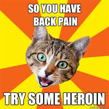 So You Have Back Pain Cat Meme - Cat Planet | Cat Planet via Relatably.com