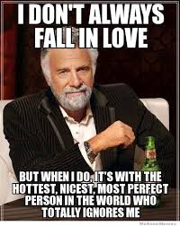 I Don't Always Fall In Love… | WeKnowMemes via Relatably.com