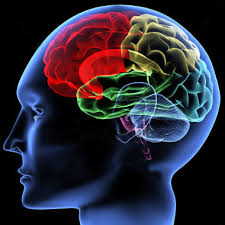 healthy mind in a healthy body essay   our work healthy mind healthy body  your mental health social network