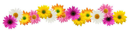 Image result for spring flowers clipart