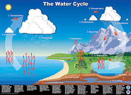 nws jetstream   hydrologic cycle diagramthe water cycle poster