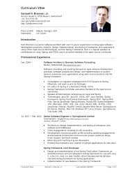 sample application resume format cipanewsletter cover letter example of resume cv format of resume cv and biodata