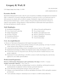 database developer resume template database developer resume