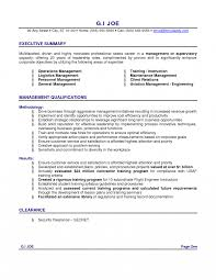 s resume summary great examples basic job application it