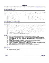 s resume summary great examples basic job application it