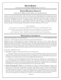 Management Analyst Resume Sle Investment Banking