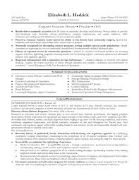 director resume   sales   director   lewesmrsample resume  non profit executive director resume sles