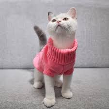 Pet Dog Cat Clothing <b>Winter Autumn Warm</b> Cat Knitted Sweater ...