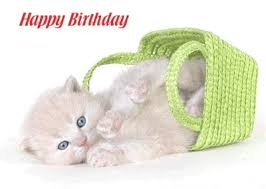Image result for cute happy birthday images gif