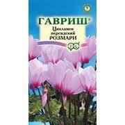 <b>Семена цикламен</b> Цикламен <b>персидский</b> Ассоль в Ярославле ...