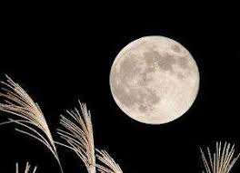 「中秋の名月」の画像検索結果