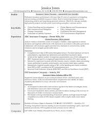 insurance s resume insurance agent resume sample resume banking resume objective perfect resume example resume and cover letter ipnodns