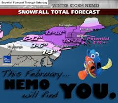 Finding Nemo' Winter Storm Meme is Touching All Your Butts | NextMovie via Relatably.com