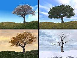 Seasons explained   Seasons for KS1 children   Spring, summer ...