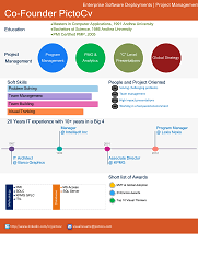 pictocv   web based infographic style visual resume creator   a        visual resume created by pictocv com