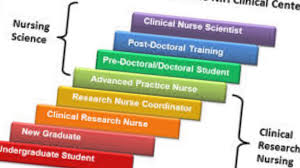 nursing research terms the importance of research to the nursing profession the importance of research to the nursing profession